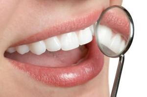 Función de los dientes